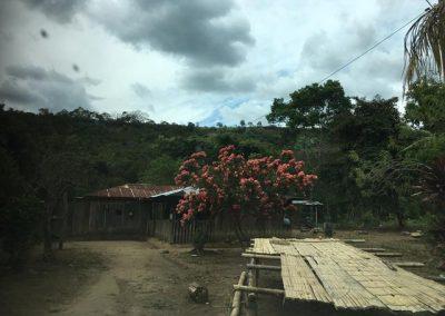 Proyectos Ecoturísticos Fundación FEN